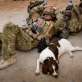 Lance Corporal Matt Robeson from the Royal Army Veterinary Corps sleeps on his day sack. Kate Holt.