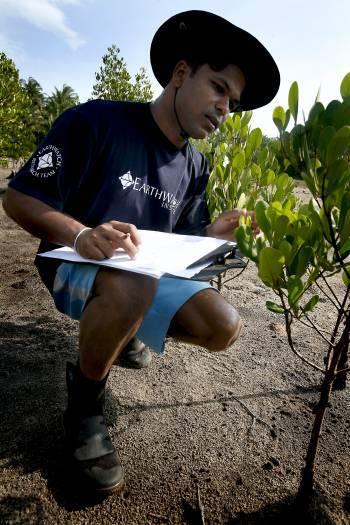 Kangana Amarsena, an Earthwatch volunteer from Sri Lanka, records data taken. Kate Holt.