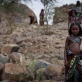 Afar girls pose for a photograph outside their home in their community of Geega. Kate Holt.