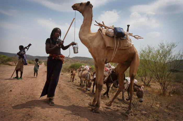 Members of the Afar Community pose for photographs in their communities near Logya. Kate Holt.