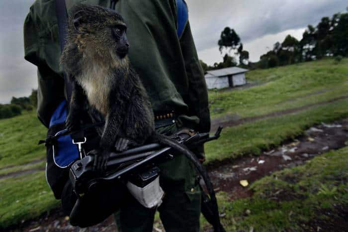 A Congolese Government soldier stands with his mascot monkey called James. Kate Holt.