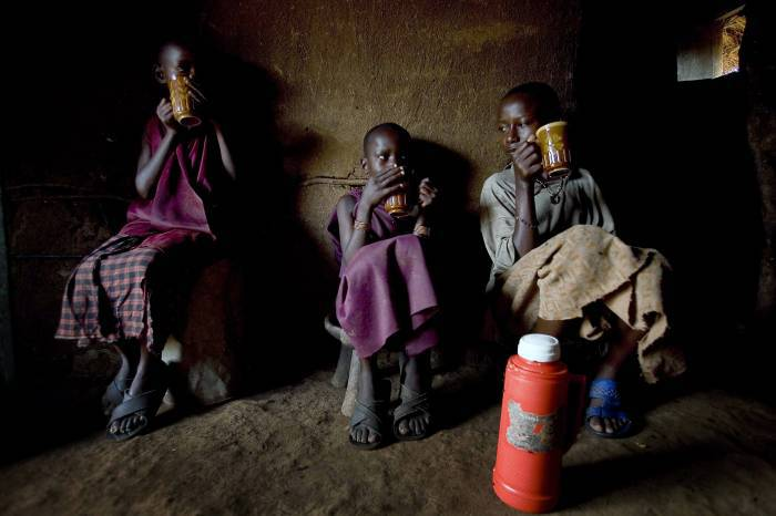 Namayani Ngoliyo drinks hot goat's milk for breakfast with her siblings at their father's homestead. Kate Holt.
