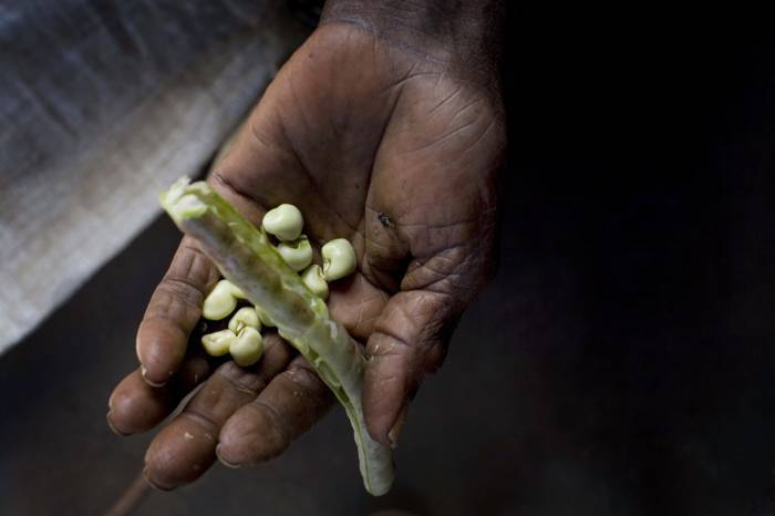 An elderly woman holds up the only beans her and her husband have to eat that day. Kate Holt.
