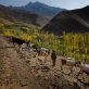 Small houses dot the landscape in valleys in which Medair have WASH projects throughout Bamyan. Kate Holt.