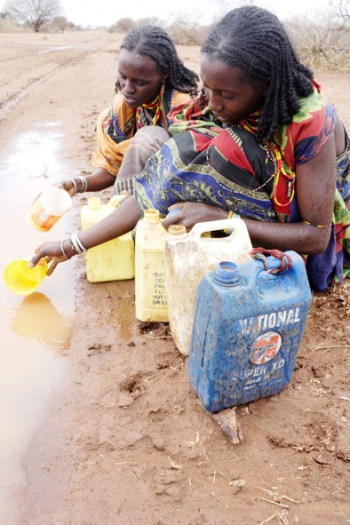 Women collect water from a puddle in a road, in one of drought stricken regions of south Eastern Ethiopia. Kate Holt.