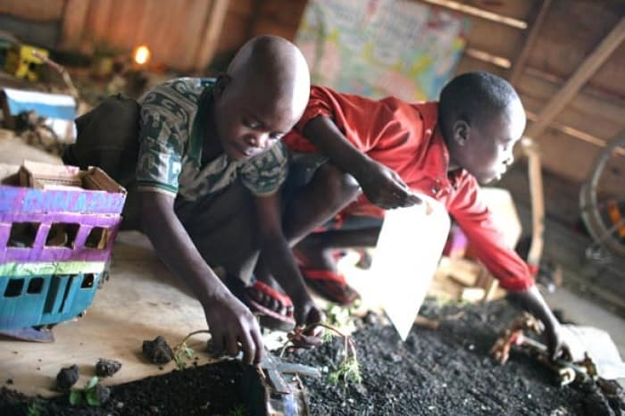 Boys from the Street Children project work on their entry. Kate Holt.