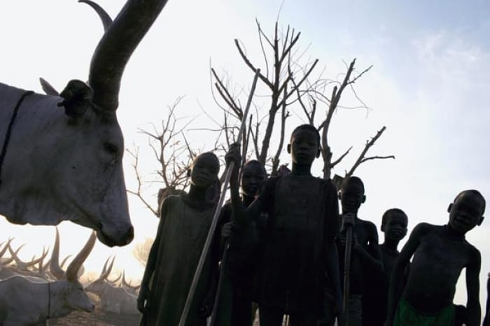 Young Mundari boys tend their calves in a cattle camp outside of Juba, Southern Sudan. Kate Holt.