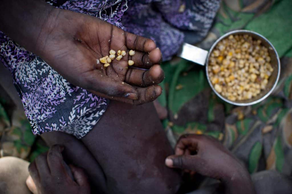 A young girl and her brother eat boiled corn at an emergency food distribution site. Kate Holt.
