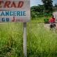DRC_SISTER ANGELIQUE